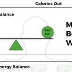 Energy Balance - Your Key to Fat Loss