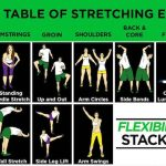 Stretch It Out! Over 50 Stretching Exercises to Help Improve Your Flexibility