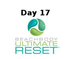 Ultimate Reset Day 17
