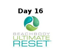 Ultimate Reset Day 16